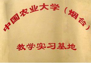 中国农业大学实习基地