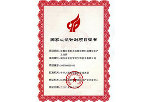 国家火炬项目证书